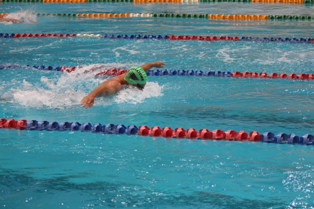 Lone swimmer Port Macquarie
